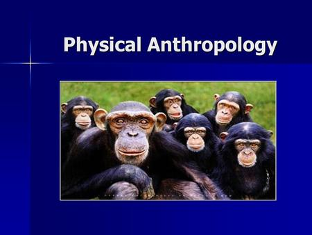 Physical Anthropology. What is Anthropology? Anthropology is the study of human life throughout history. Anthropology is the study of human life throughout.