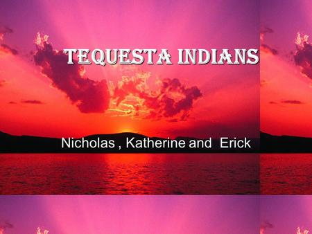 Tequesta Indians Nicholas, Katherine and Erick The first Indians  The Tequesta Indians were one of the first Indians to settle in south Florida.  They.