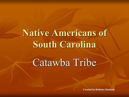 Native Americans of South Carolina Catawba Tribe Created by Brittany Durham.