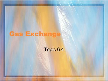 Gas Exchange Topic 6.4. Assessment Statements 6.4.1 Distinguish between ventilation, gas exchange and cell respiration. 6.4.2 Explain the need for a ventilation.