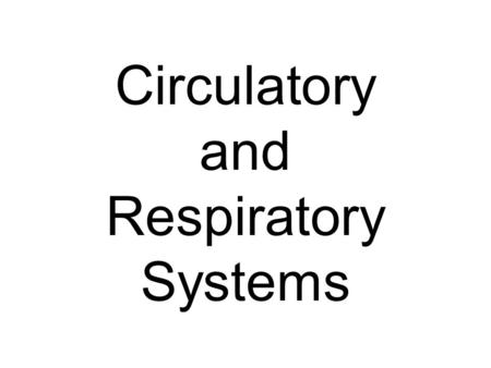 Circulatory and Respiratory Systems. The Circulatory System.