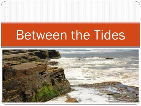 Chapter 11 (Castro) Between the Tides. The Intertidal Zone <strong>Of</strong> all the ocean, the intertidal zone (also called the littoral zone) is the best known. The.