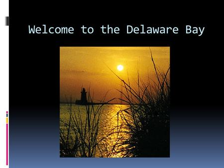 Welcome to the Delaware Bay. Delaware and Chesapeake Bays.