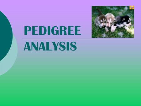 PEDIGREE ANALYSIS - Ex: sickle cell anemia, downs syndrome, and cystic fibrosis.