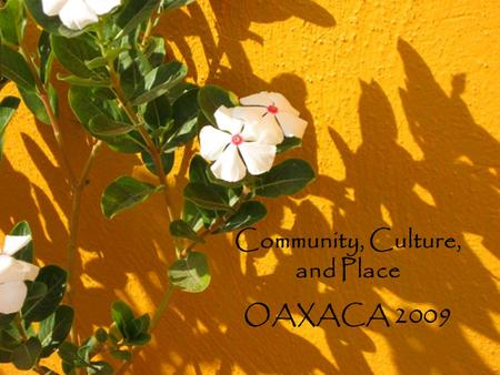 Community, Culture, and Place OAXACA 2009. Welcome!! Maggie Erin.