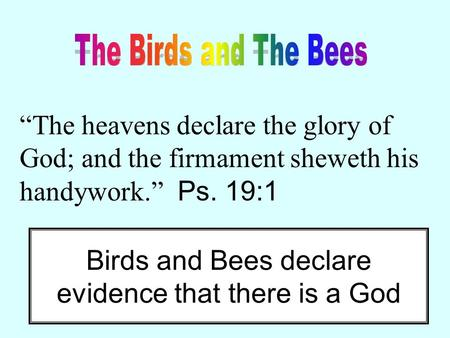 """The heavens declare the glory of God; and the firmament sheweth his handywork."" Ps. 19:1 Birds and Bees declare evidence that there is a God."