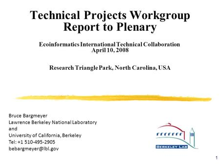 1 Technical Projects Workgroup Report to Plenary Ecoinformatics International Technical Collaboration April 10, 2008 Research Triangle Park, North Carolina,