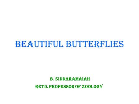 BEAUTIFUL BUTTERFLIES B. Siddaramaiah Retd. Professor of Zoology.