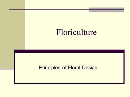 Floriculture Principles of Floral Design. Five Principles of Design Balance Harmony (unity) Scale (proportion) Emphasis/Focal area/Focal point Rhythm.