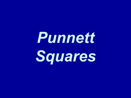 Punnett Squares. Phenotype and Genotype Practice 1. Describe the genotypes given. The first one is already done. Example: DD homozygous, dominant A. ss.