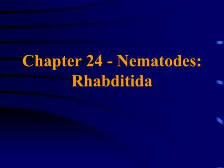 Chapter 24 - Nematodes: Rhabditida. Family Strongyloididae Strongyloides stercoralis May exhibit either a direct (homogonic) exclusively parasitic life.