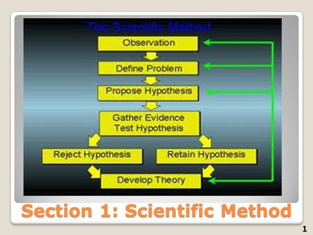Section 1: Scientific Method 1. Parts of the scientific method 2 1)____________: (quantitative / qualitative) Information gathered by using the senses.
