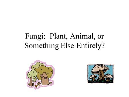 Fungi: Plant, Animal, or Something Else Entirely?.