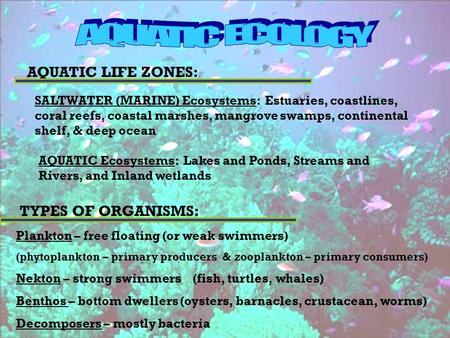 AQUATIC LIFE ZONES: SALTWATER (MARINE) Ecosystems: Estuaries, coastlines, coral reefs, coastal marshes, mangrove swamps, continental shelf, & deep ocean.