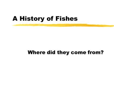 A History of Fishes Where did they come from?. A History of Fishes 2 Evolutionary History  Fish have adapted to a wide range of environmental parameters.