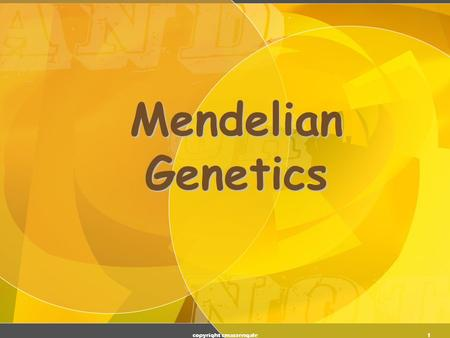 1 Mendelian Genetics copyright cmassengale 2 Genetic Terminology  Trait - any characteristic that can be passed from parent to offspring  Heredity.