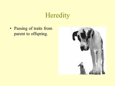 Heredity Passing of traits from parent to offspring.