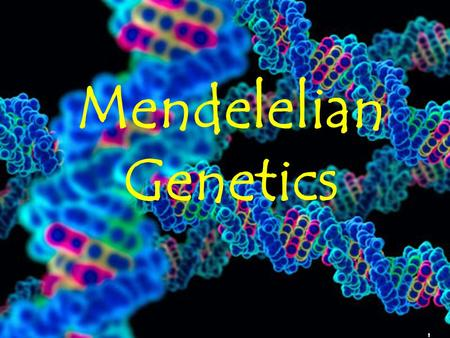 1 Mendelelian Genetics. 2 Gregor Mendel (1822-1884) Responsible for the Laws governing Inheritance of Traits.