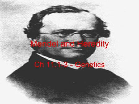 Mendel and Heredity Ch 11.1-3 - Genetics. Genetics Study of Heredity Passing of traits from parents to offspring Trait: a specific characteristic.