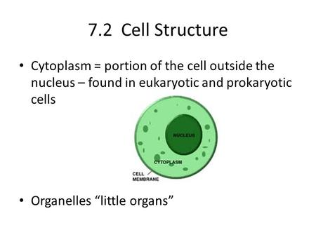 "7.2 Cell Structure Cytoplasm = portion of the cell outside the nucleus – found in eukaryotic and prokaryotic cells Organelles ""little organs"""