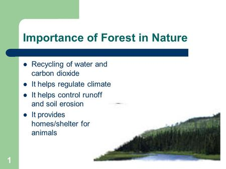 forests and their products