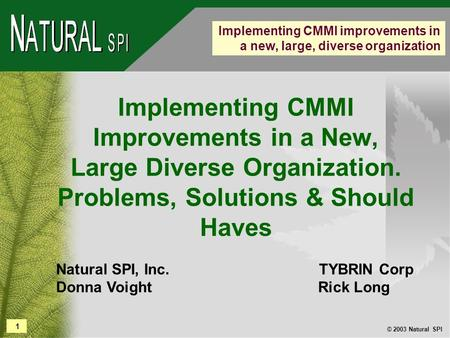 1 © 2003 Natural SPI Implementing CMMI improvements in a new, large, diverse organization Implementing CMMI Improvements in a New, Large Diverse Organization.