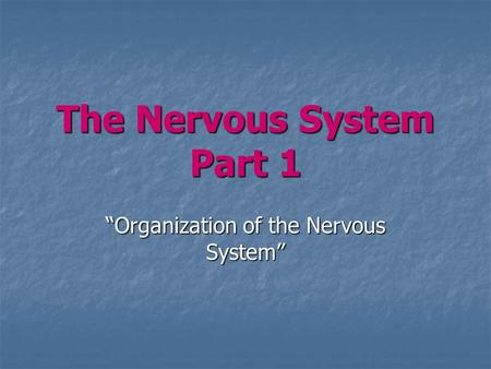 "The Nervous System Part 1 ""Organization of the Nervous System"""