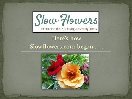 Here's how Slowflowers.com began.... Flower consumers do NOT know where the flowers they purchase come from. They do not know who grew them or how to.