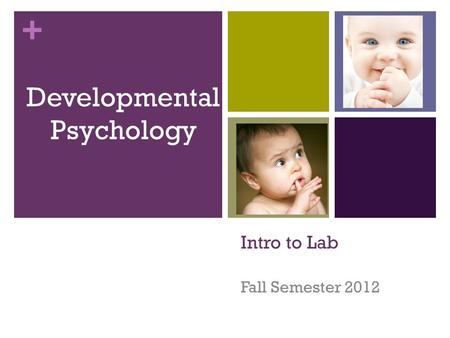 + Intro to Lab Fall Semester 2012 Developmental Psychology.