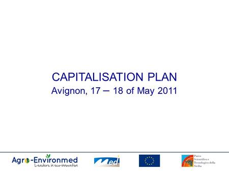 CAPITALISATION PLAN Avignon, 17 – 18 of May 2011.