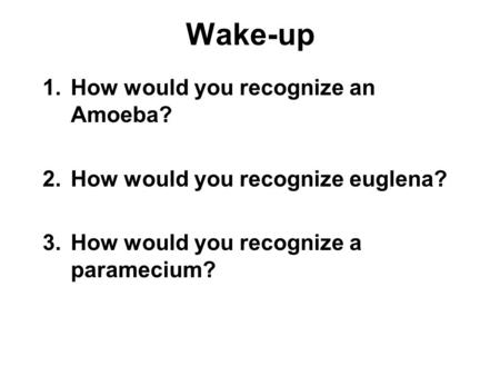 Wake-up 1.How would you recognize an Amoeba? 2.How would you recognize euglena? 3.How would you recognize a paramecium?