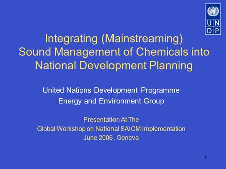 1 Integrating (Mainstreaming) Sound Management of Chemicals into National Development Planning United Nations Development Programme Energy and Environment.