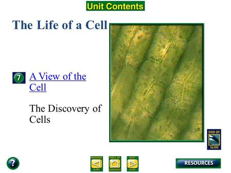 Unit Overview – pages 138-139 The Life of a Cell A View of the Cell The Discovery of Cells.