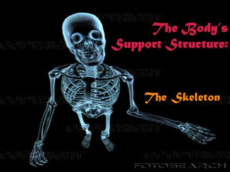 The Body's Support Structure: The Skeleton Functions of the skeleton: o Provides shape and support o Enables you to move o Protects your internal organs.