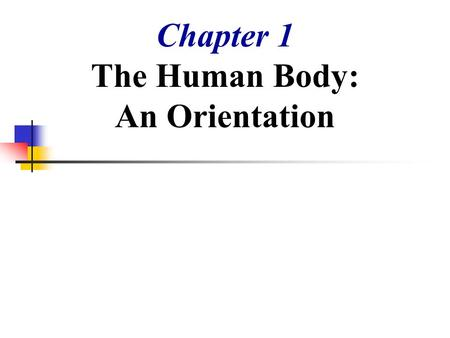 Chapter 1 The Human Body: An Orientation. The Human Body – An Orientation Anatomy – study of the structure and shape of the body and its parts Physiology.