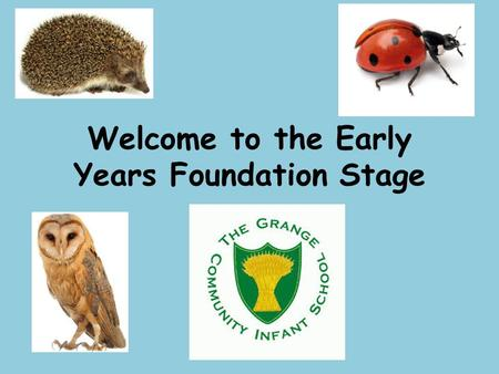 Welcome to the Early Years Foundation Stage. Our Team Hedgehog LadybirdOwl Miss Sharp Miss MillerMiss Parish Mrs Van Den Brul Mrs Peverall Mrs Hill Mrs.