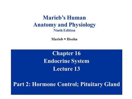 Anatomy and Physiology Part 2: Hormone Control; Pituitary Gland