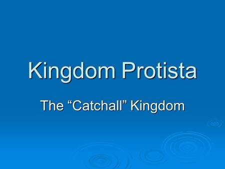 "Kingdom Protista The ""Catchall"" Kingdom. Three Divisions  Animal-like- Protozoans  Plant-like- Algae  Fungus-Like- slime molds."