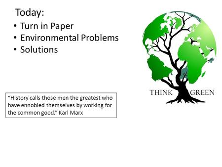 Environmental solutions essay