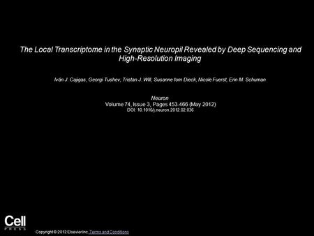 The Local Transcriptome in the Synaptic Neuropil Revealed by Deep Sequencing and High-Resolution Imaging Iván J. Cajigas, Georgi Tushev, Tristan J. Will,