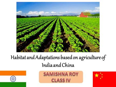 Habitat and Adaptations based on agriculture of India and China.