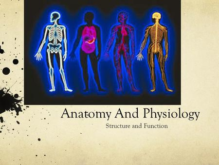 Anatomy And Physiology Structure and Function. Define Anatomy and Physiology Anatomy: the study of internal and external structure and the physical relationship.