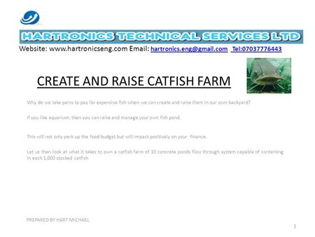 CREATE AND RAISE CATFISH FARM Why do we take pains to pay for expensive fish when we can create and raise them in our own backyard? If you like aquarium,