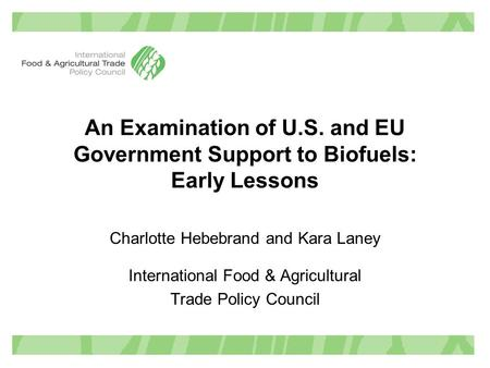An Examination of U.S. and EU Government Support to Biofuels: Early Lessons Charlotte Hebebrand and Kara Laney International Food & Agricultural Trade.