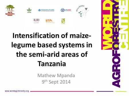 Intensification of maize- legume based systems in the semi-arid areas of Tanzania Mathew Mpanda 9 th Sept 2014.