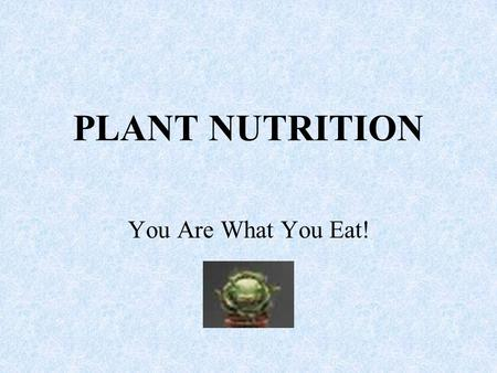 PLANT NUTRITION You Are What You Eat!.