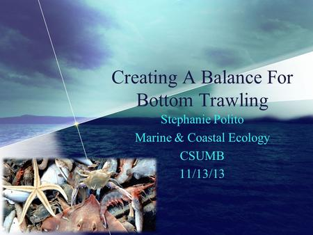 Creating A Balance For Bottom Trawling Stephanie Polito Marine & Coastal Ecology CSUMB 11/13/13.