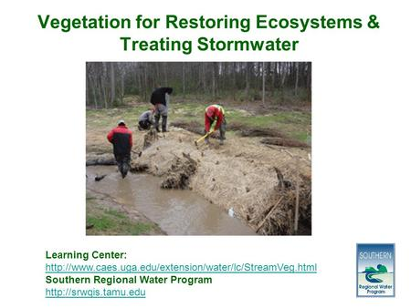 Vegetation for Restoring Ecosystems & Treating Stormwater Learning Center:  Southern Regional.