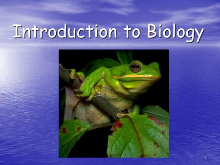 1 Introduction to Biology. 2 Complexity of Life Biology is the study of life (bacteria, protists, fungi, plants, animals) Biology is the study of life.
