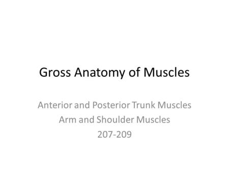 Gross Anatomy of Muscles Anterior and Posterior Trunk Muscles Arm and Shoulder Muscles 207-209.